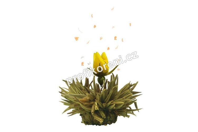 Profikoření - Kvetoucí čaj - Šepot vulkánu