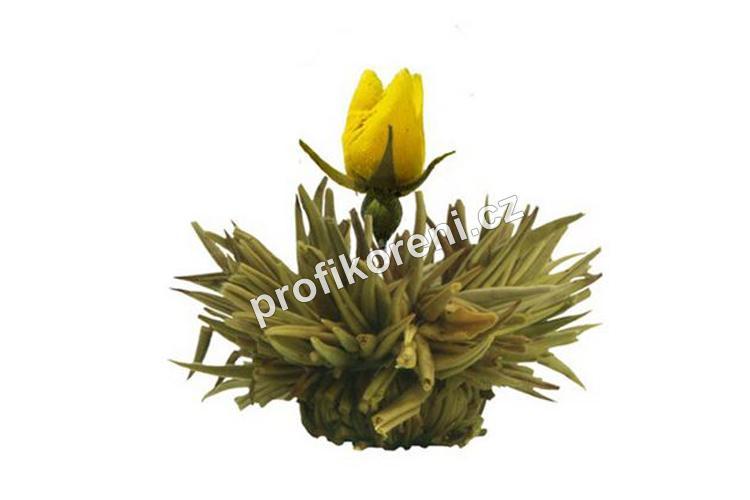 Profikoření - Kvetoucí čaj - Kvetoucí déšť