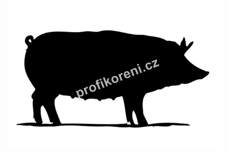 Vepřová střívka kalibr 28/30 ČA (Střeva na párky a klobasy)