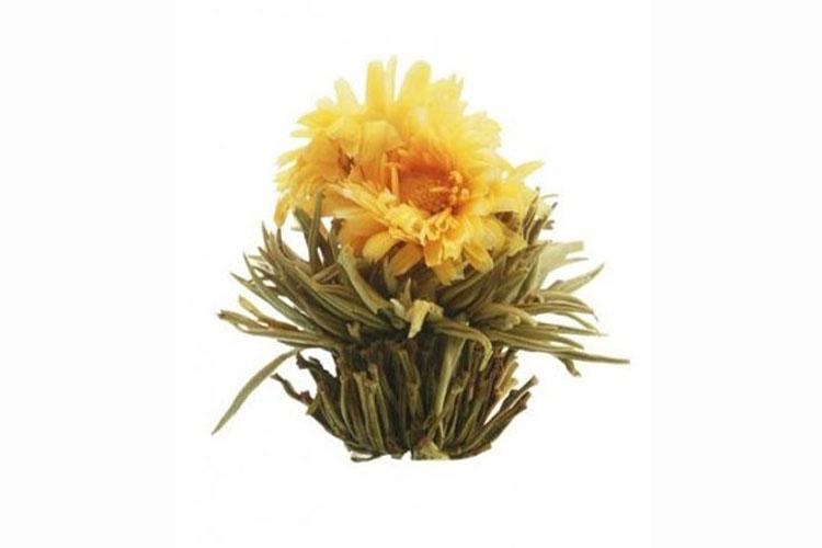 Profikoření - Kvetoucí čaj - Slunovrat
