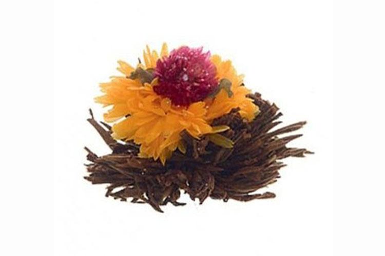 Profikoření - Kvetoucí čaj - Západ slunce