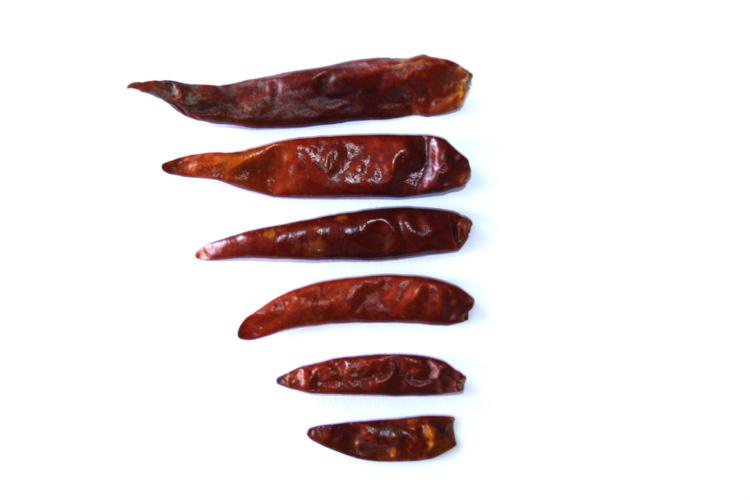 Profikoření - Chilli papričky celé 4-6 cm (100g)