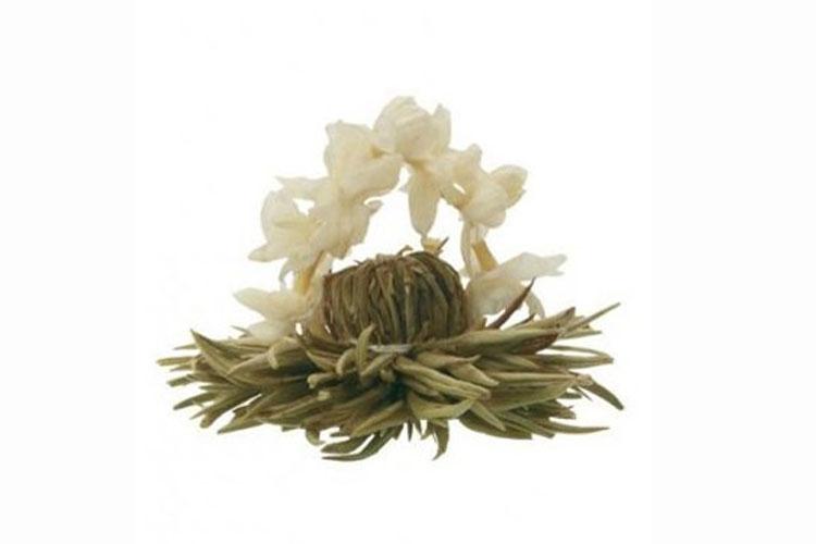 Profikoření - Kvetoucí čaj - Stříbrná romance