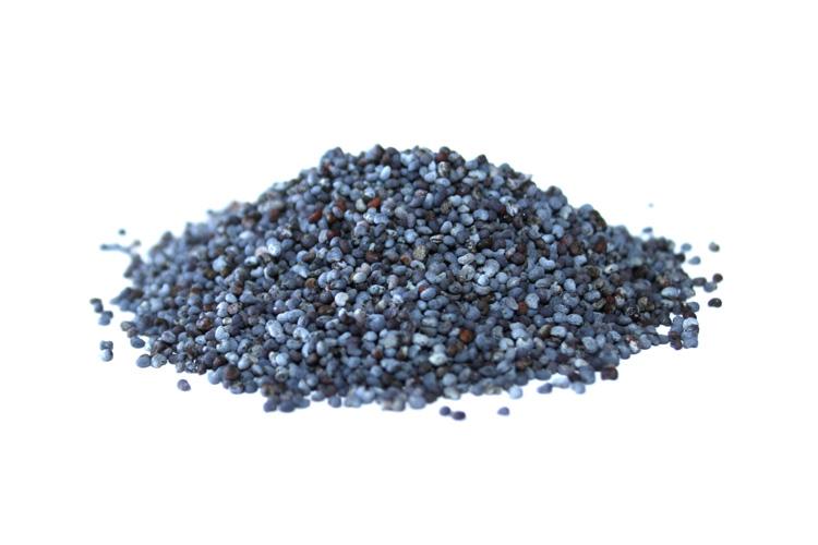 Profikoření - Mák modrý (1 Kg)